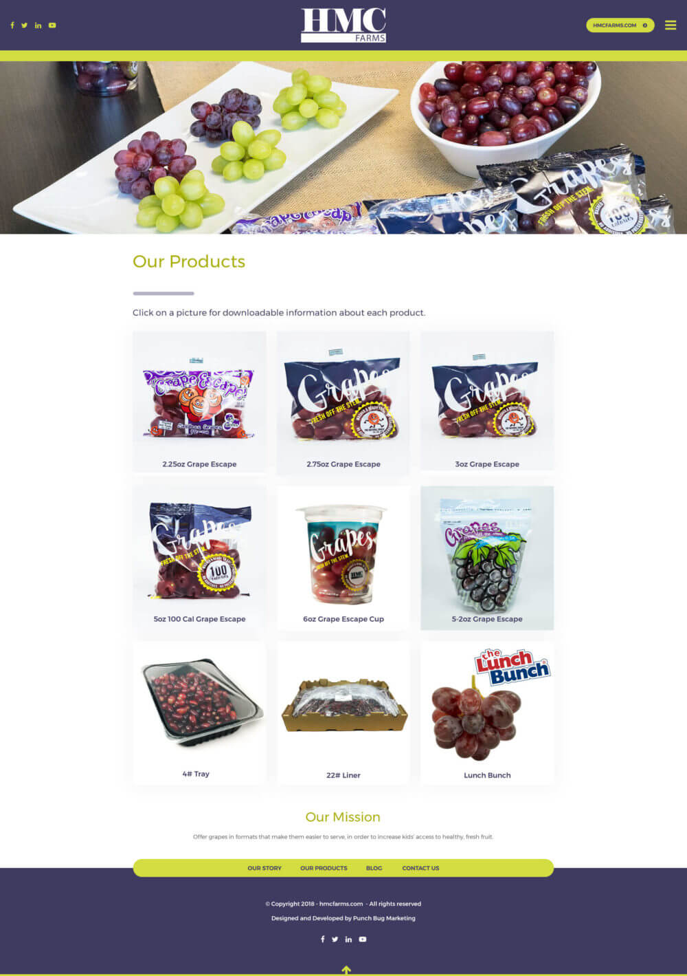 HMC Farms Grapes for Schools - Products